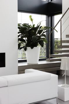 This huge planter is a perfect solution for everyone who likes creative arrangements. Despite its size, Straight Round is light and easy to move. Minimalist Interior, Minimalist Home, Exterior Design, Interior And Exterior, Cactus Plante, Weathered Furniture, Living Comedor, Natural Interior, Inside Home