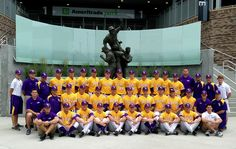 Your 2013 LSU Fighting Tigers baseball team.