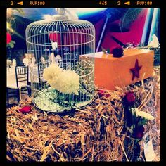 Vintage Circus themed wedding decorations at Dreams Puerto Aventuras