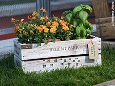 #ArredoPallet #Arredo #Pallet #Garden #Design #Flower