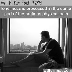 The pain of  loneliness -  WTF fun facts