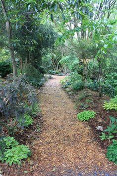 Juniper Level Botanic Garden: Gallery