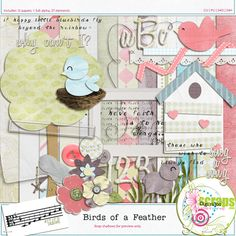 $5.00  Birds of a Feather by Key of D Designs at Digiridoo Scraps