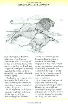 RHODESIAN RIDGEBACK (Pet Owner's Guide): Stig C. Carlson: 9781860540585: Amazon.com: Books