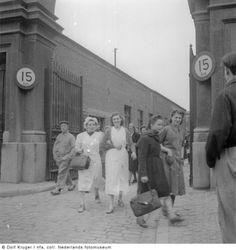 Maastricht<br />Maastricht: Aardewerkfabriek Sphinx in 1950(Geheugen van NL)