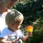 Tsitsikamma National Park Tsitsikamma National Park, Knysna, Wilderness, Activities For Kids, National Parks, Children, Young Children, Boys, Children Activities