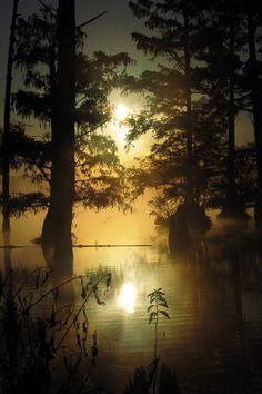 Bluff Lake, Mississippi, United States - Roger Smith.