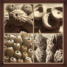 Studie organische vormen keramiek