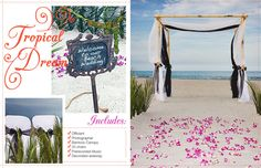 Another Pass A Grille Beach Wedding idea in Florida