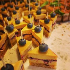 Ihana iltapala: nyhtökauraherkkuja ja raakakakkuja joista kuvassa sitruunajuustokakku chia-mustikkahillolla  Kiitos @pauligin_paula #pauligkulma #raakakakku #omnom #instagood #foodporn #foodpicsdaily #healthyfood #photooftheday #healthyeating #vegan #food  #rawcake #beautiful #beauty