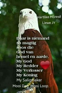 Good Morning Wishes, Good Morning Quotes, Goeie More, Afrikaans Quotes, Beautiful Landscapes, Verses, Blessed, Faith, Words
