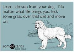 Dogs are so SMART!!!