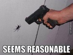 And that's a huge spider, therefore it is reasonable.