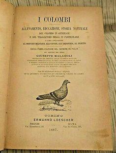 MALAGOLI GIUSEPPE I COLOMBI. ALLEVAMENTO, EDUCAZIONE, ... 1887 | eBay Antiques For Sale, Personalized Items, Ebay, Colombia