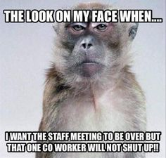 Funny work memes coworkers faces 50 New ideas Work Memes, Work Quotes, Work Humor, Work Funnies, Lab Humor, Haha Funny, Funny Shit, Funny Memes, Hilarious