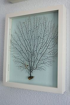 Sea fan wall art. I love how simple these are to make. This will give our bedroom a nice, ocean feel.