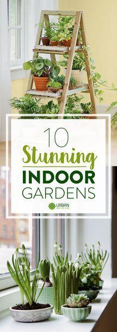 Indoor Gardening Ideas DIY Inspiration for your apartment. By Urban Way of Life @ http://urbanwayoflife.com/10-stunning-indoor-gardens/