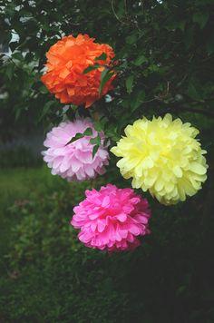 Beskrivning på hur du gör pom poms. Enkelt gjord dekoration till sommarfesten