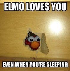 13 Best Elmo Memes Images Elmo Memes Elmo Memes