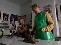 ▶ Mr Chinnery - tortoise - The League of Gentlemen - BBC comedy - YouTube