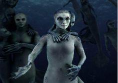 People Believed This?-Real life mermaid