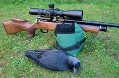 huntsman-jasckdaw-2