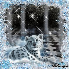 """Tiger Glitter Graphics 