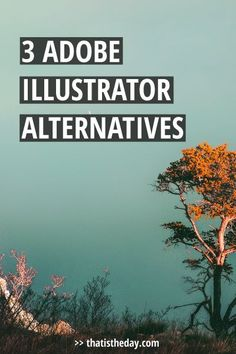 Adobe Illustrator is by far the most effective vector based design program out there. Many people shy away from working with it, though. There's a steep learning curve for those who start out. Here are 3 alternatives if you're not hooked on Adobe Illustrator | thatistheday.com