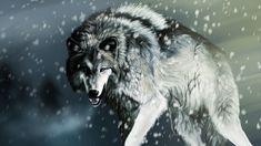 Wolf wolves predator carnivore winter snow artwork t wallpaper. Artwork Lobo, Wolf Artwork, Angry Wallpapers, Live Wallpapers, Widescreen Wallpaper, Lobo Wallpaper, Computer Wallpaper, Wild Animal Wallpaper, Wolf Predator