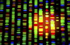 Brain Tumor: What can DNA tell us?