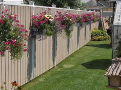 Hanging baskets along privacy fence