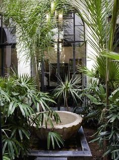 6 Cutting Edge Garden Trends from Australia Garden Design One