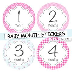 Baby girl month stickers pink blue floral INSTANT DOWNLOAD stickers / monthly stickers baby shower gift