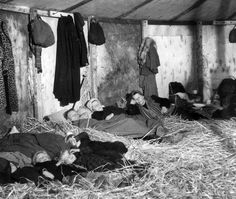 German refugees fleeing from the Russian zone in the first few weeks after the end of World War II in Europe, seen on Oct. 25, 1945. They are sleeping on straw in a makeshift  transit camp at Uelzen in the British zone of Germany.