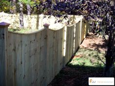 Scalloped Fence for the Backyard