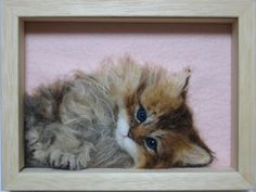 This is a little disturbing and also lovely.    Needle Felted Kitten in frame - Midofelt