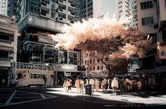 Hong Kong Infrared by Yiu Yu Hoi -03