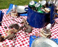 Camping Birthday Party Decorating Ideas