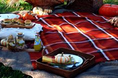 Romantic Fall Picnic for Two