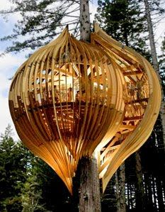 El sueño de la casita en el árbol