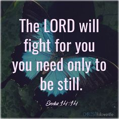 Bible Verses: the lord will fight for you you need only to be still. exodus 14:14