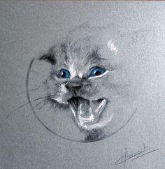 Mathilde Hedouart - Mine de plomb, encre et cire aquarellable sur papier
