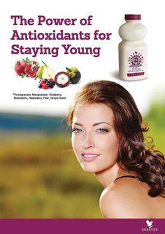 Forever Pomesteen Power Gyümölcskoncentrátum C vitaminnal Többet tudnál, megvennéd? http://www.flpshop.hu/customers/recommend/load?id=ZmxwXzY5ODc= http://gaboka.flp.com/products.jsf Segítsünk? gaboka@flp.com