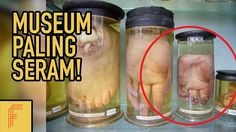 7 Museum Paling Seram di Dunia - Fenoomena