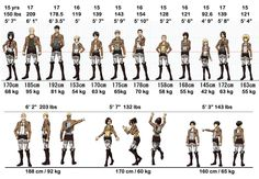 Character Height and Weights, The height and weight of all characters from Attack on Titan. Dat Mikasa
