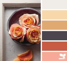petalled palette