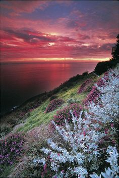 ~~Big Sur Sunset, California by post-ranch-inn~~