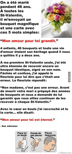 Le tru le plus chou du monde Real Facts, French Quotes, Sad Stories, Happy Fun, Cute Love, Funny Cute, Love Quotes, Daily Quotes, How To Look Better