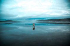 Fox Grom / Murmansk Oblasone 如同進入異世界一樣:在冰湖上行走的哈士奇 | Popbee - 線上時尚生活雜誌