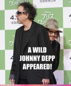 baha, a wild Johnny Depp!